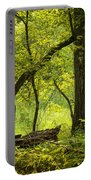 Deep Forest Scenic Portable Battery Charger
