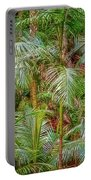 Deep In The Forest, Tamborine Mountain Portable Battery Charger