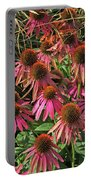 Deep Pink Echinacea Straw Flowers Green Leaf And Grass Background 2 9132017 Portable Battery Charger