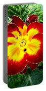 Deep Red Bright Yellow Portable Battery Charger