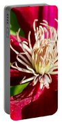 Deep Red Clematis Portable Battery Charger