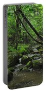 Deep Woods Stream 3 Portable Battery Charger