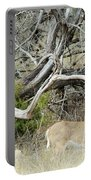Deer 009 Portable Battery Charger