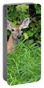 Deer Beauty II Portable Battery Charger
