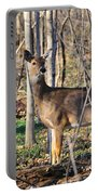 Deer Early Spring Portable Battery Charger