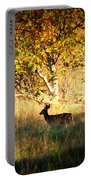 Deer Family In Sycamore Park Portable Battery Charger by Carol Groenen