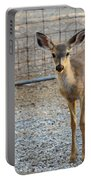 Deer Fawn - 1 Portable Battery Charger