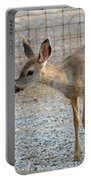 Deer Fawn - 2 Portable Battery Charger