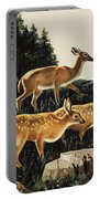Deer In Forest Clearing Portable Battery Charger
