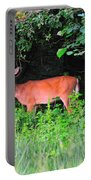Deer In Overhang Of Trees Portable Battery Charger