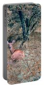 Deer In Woods Portable Battery Charger