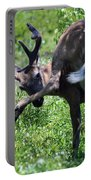 Deer Itch 2 Portable Battery Charger