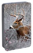 Deer On A Frosty Morning  Portable Battery Charger