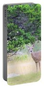 Deer21 Portable Battery Charger