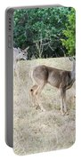 Deer24 Portable Battery Charger