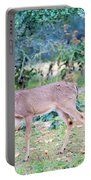 Deer42 Portable Battery Charger
