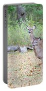 Deer46 Portable Battery Charger