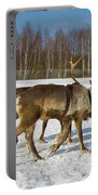 Deers Running On Snow Portable Battery Charger