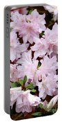 Delicate Pink Azaleas Portable Battery Charger by Carol Groenen