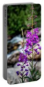 Delicate Purple Portable Battery Charger