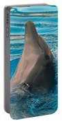 Delphin 2 Portable Battery Charger
