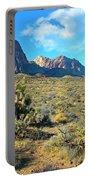 Desert Beauty Portable Battery Charger