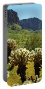 Desert Cholla 2 Portable Battery Charger