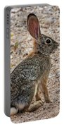 Desert Cottontail 1822 Portable Battery Charger