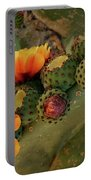 Desert Flame Portable Battery Charger