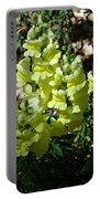 Desert Flowers Virginia City Nevada Portable Battery Charger