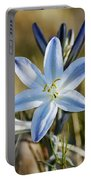Desert Lily Portable Battery Charger