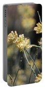 Desert Milkweed Portable Battery Charger