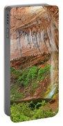 Desert Oasis Portable Battery Charger
