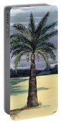 Desert Palm 2 Portable Battery Charger