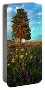 Desert Pines Meadow Portable Battery Charger