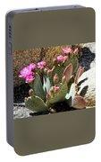 Desert Plants - Fuchsia Cactus Flowers Portable Battery Charger