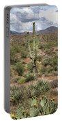 Desert Renewel Portable Battery Charger