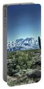 Desert Snow Portable Battery Charger