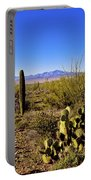 Desert Spring Portable Battery Charger by Chad Dutson