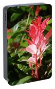 Devils Blush - Australian Native In Blue Mountains Portable Battery Charger