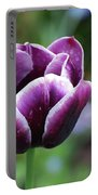 Dew Clinging To The Petals Of  A Tulip Blossom Portable Battery Charger