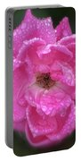 Dew Covered Rose Portable Battery Charger