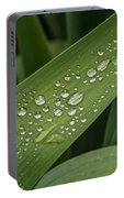 Dew Drops On Leaf Portable Battery Charger