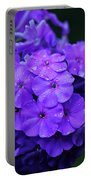 Dew Kissed Summer Phlox Portable Battery Charger