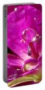 Dew On Pink Portable Battery Charger