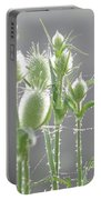 Dew On Thistles 3 Portable Battery Charger