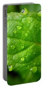Dewy Mint Portable Battery Charger