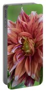 Dhalia 2 Portable Battery Charger