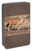 Dhole In The Wild Portable Battery Charger