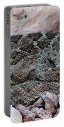 Diamondback Rattlesnake 062414a Portable Battery Charger